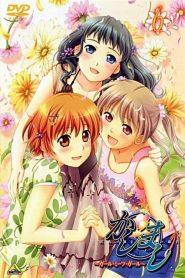 Kashimashi – Girl Meets Girl